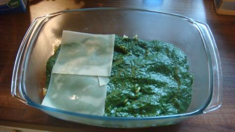 Zapečené těstoviny se špenátem