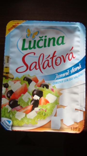 Lučina salátová slaná