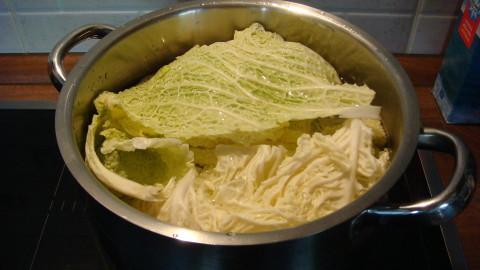 Vaření kapusty